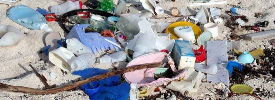 Ambitious proposal for a single-use plastics directive becomes reality