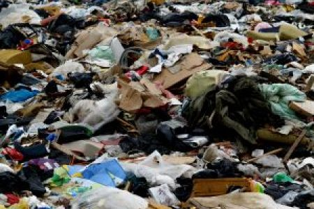 The European Convention and Environmental Protection: the Case of the Waste Crisis in Italy