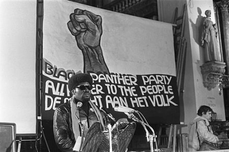 The Black Panther Party: Freedom Fighters or Radicalists?