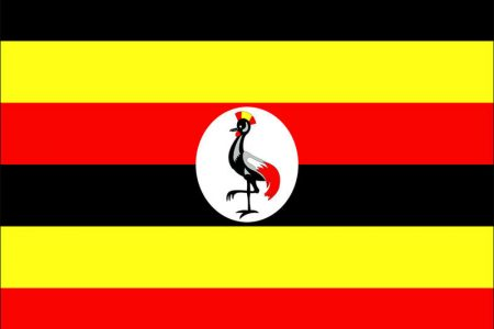 The Ugandan Anti-Homosexuality Act, 2014: A political spectacle